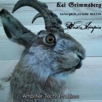 SODP009 / DDS&HHP009: Kai Grimmsberg / In7ergAlA,ct1n3n Kei7T¤ / Vox Impia - Amplifier Tech. Problem [split] (2014)