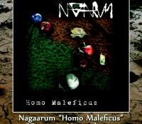 Nagaarum