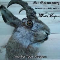 SODP009 / DDS&HHP009: Kai Grimmsberg / In7ergAlA,ct1n3n Kei7T¤ / Vox Impia - Amplifier Tech. Problem [split] (2014)