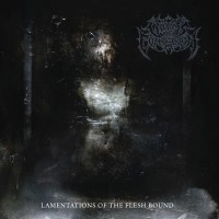 SAT246 / RTM100: Victims Of Contagion - Lamentations Of The Flesh Bound (2019)